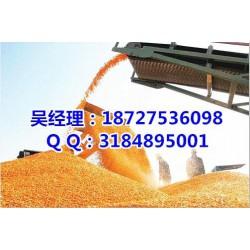 民发养殖(图)_哪里收购玉米价格高_收购玉米