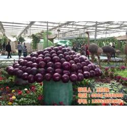 佛山景观工程_承航景观工程_蔬菜景观工程