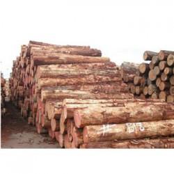 都安松木收购企业一览表