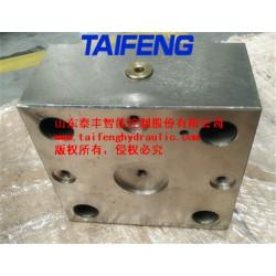 供应泰丰TLFA50DB型调压控制盖板