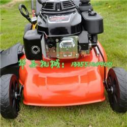 多功能小型草坪机 汽油剪草机