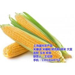 西藏玉米批发,上海骧旭农产品,玉米批发价