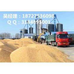 民发养殖(图)、高价收购玉米、收购玉米