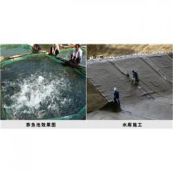 青海防水毯 膨润土尺寸
