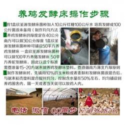 发酵床技术养羊到底行不行 用欣圣源发酵床