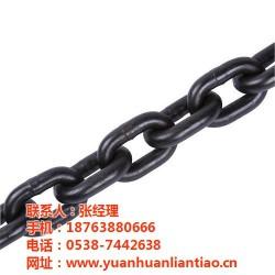 丽江起重链条_泰安市鑫洲机械_起重链条价格