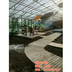 近郊农家院(图),东丽农家院出售,农家院