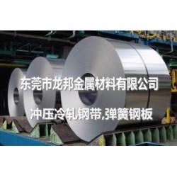 AISI1050进口弹簧钢软料