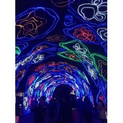 秦淮河灯会