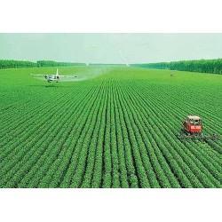正规出国劳务赴澳大利亚农场工年薪30万
