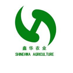 山东鑫华出售无土栽培    阳台水培无土栽培