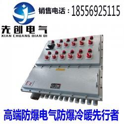 先创防爆配电箱材质多选支持定制