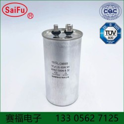 CBB65 空调,清洗机电容100uF 450VAC