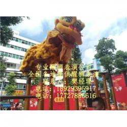 郑州开业醒狮,郑州舞狮表演,郑州舞龙舞狮