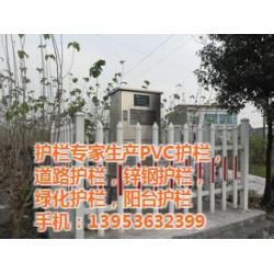 山东塑钢护栏(图)_新农村改造围墙护栏_宁夏
