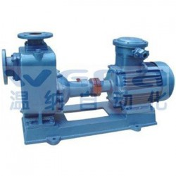40CYZ-40,油泵