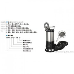 源立卧式直联式离心泵,管道泵IZ80-65-125A