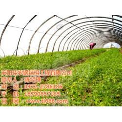 蔬菜温室骨架,蔬菜温室,佳农大棚(查看)